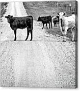 Our Way Or The Highway Bw Acrylic Print