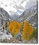Ouray Fall Colors Acrylic Print