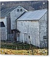 Out Behind The Barn Acrylic Print