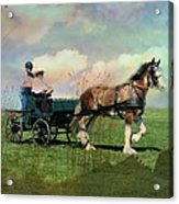 Out For A Trot Acrylic Print