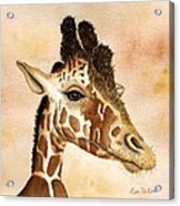 Out Of Africa's Giraffe Acrylic Print