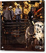 Out Of The Gate Acrylic Print