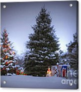 Outdoor Christmas Tree Acrylic Print