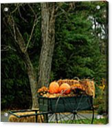 Outdoor Fall Halloween Decorations Acrylic Print