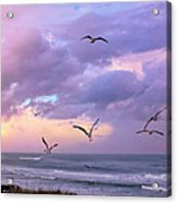 Outer Banks Sunrise Acrylic Print