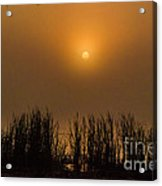Over Golden Pond Acrylic Print