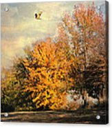 Over The Golden Tree Acrylic Print