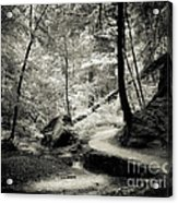 Over The River And Through The Woods Acrylic Print