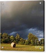 Overcast - Before Rain Acrylic Print by Michal Boubin