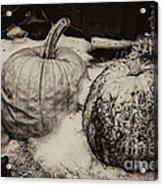 Overdue Fall Feast Remains Acrylic Print