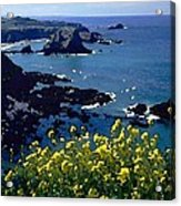 Overlook Point Acrylic Print by Cole Black
