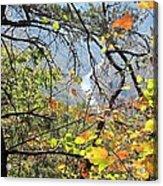 Overlooking The Gorge Acrylic Print