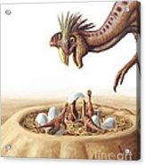 Oviraptor And Nest Acrylic Print