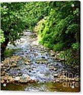 Owens Creek Acrylic Print