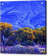 Owens Valley Fall Colors  Acrylic Print