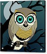 Owl 3 Acrylic Print