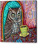 Owl At The Cafe Acrylic Print by Jay  Schmetz