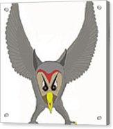 Owl Attacking Acrylic Print