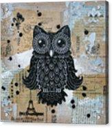 Owl On Burlap1 Acrylic Print by Kyle Wood