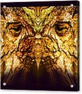 Owl Tree Acrylic Print