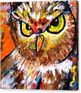 Owl With An Attitude Acrylic Print