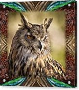 Owl With Collage Border Acrylic Print