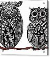 Owls 10 Acrylic Print