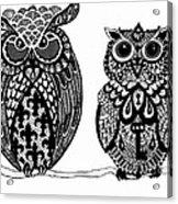 Owls 9 Acrylic Print