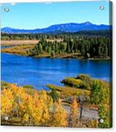 Oxbow Bend, Grand Teton National Park Acrylic Print