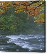 Oxtongue River Provincial Park, Dwight Acrylic Print