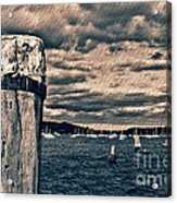 Oyster Bay Acrylic Print