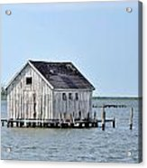 Oyster Shucking Shed Acrylic Print