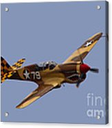 P-40 Acrylic Print