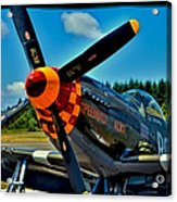 P-51 Mustang Acrylic Print by David Patterson