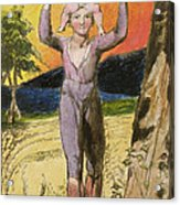 P.124-1950.pt29 Frontispiece To Songs Acrylic Print by William Blake