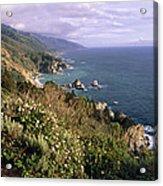 Pacific Coastline At Big Sur Acrylic Print by George Oze
