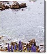 Pacific Grove Coastline Acrylic Print