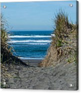 Pacific Trail Head Acrylic Print