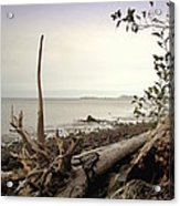 Pacific Vista Acrylic Print