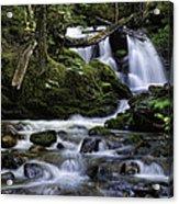 Packer Falls And Creek Acrylic Print
