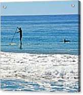 Paddle Boarder And Dolphin Acrylic Print