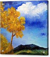 Paesaggio Acrylic Print