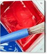 Paint Brush Acrylic Print