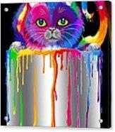 Paint Can Cat Acrylic Print