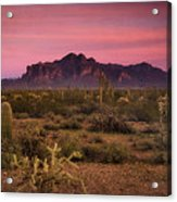 Paint It Pink Sunset  Acrylic Print