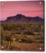 Paint It Pink Sunset  Acrylic Print by Saija  Lehtonen