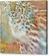 Paint Me A Cheetah Acrylic Print