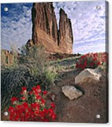 Paintbrush And  Organ Rock Acrylic Print