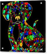 Painted Black Dog Acrylic Print by Nick Gustafson