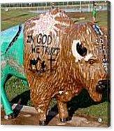 Painted Buffalo Acrylic Print